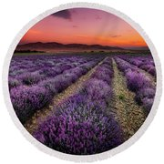 Lavender Fields At Sunrise Round Beach Towel