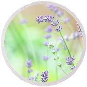 Lavender Garden Round Beach Towel by Trina Ansel
