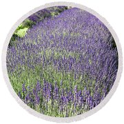 Round Beach Towel featuring the photograph Lavender by Rod Best
