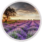 Lavender Sunrise Round Beach Towel
