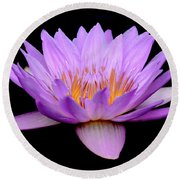 Lavender Tropical Day Lily Round Beach Towel