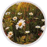 Lazy Days Daisies Round Beach Towel