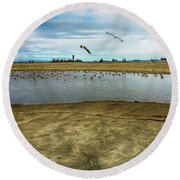 Lb Seagull Pond Round Beach Towel by Joseph Hollingsworth