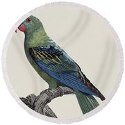 Le Perroquet A Bec Couleur De Sang / Great-billed Parrot - Restored 19thc. Illustration By Barraband Round Beach Towel