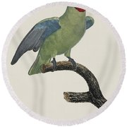 Le Perroquet Geoffroy Male / Red Cheeked Parrot - Restored 19th C. By Barraband Round Beach Towel