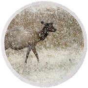 Lead Cow Round Beach Towel