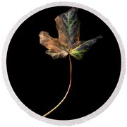 Leaf 1 Round Beach Towel