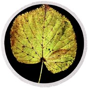 Leaf 10 Round Beach Towel