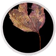 Leaf 11 Round Beach Towel