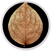 Leaf 12 Round Beach Towel