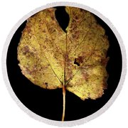 Leaf 13 Round Beach Towel