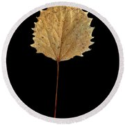 Leaf 14 Round Beach Towel