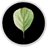 Leaf 19 Round Beach Towel