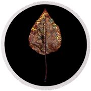 Leaf 21 Round Beach Towel