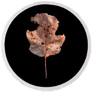 Leaf 24 Round Beach Towel