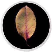 Leaf 26 Round Beach Towel
