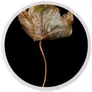Leaf 3 Round Beach Towel