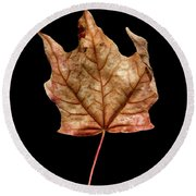 Leaf 4 Round Beach Towel