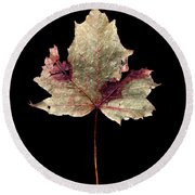 Leaf 7 Round Beach Towel