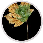 Leaf 9 Round Beach Towel