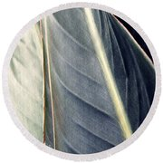Leaf Abstract 14 Round Beach Towel