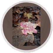 Round Beach Towel featuring the photograph Leaf Bling by Kendall McKernon