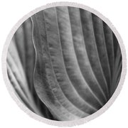 Leaf - Edgy Path Round Beach Towel by Ben and Raisa Gertsberg