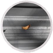 Leaf In Suspense Round Beach Towel