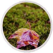 Leaf On Moss Round Beach Towel