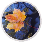Leaf On The Water Round Beach Towel