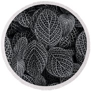 Round Beach Towel featuring the photograph Leaf Pattern by Wayne Sherriff