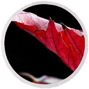 Leaf Study IIi Round Beach Towel