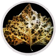 Leaf With Green Spots Round Beach Towel