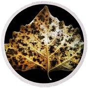 Leaf With Green Spots Round Beach Towel by Joseph Frank Baraba