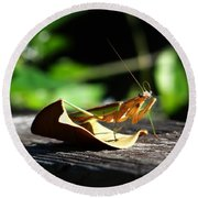 Leafy Praying Mantis Round Beach Towel