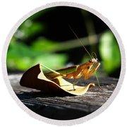 Leafy Praying Mantis Round Beach Towel