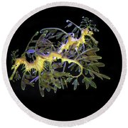 Leafy Sea Dragons Round Beach Towel by Anthony Jones