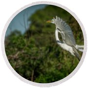 Round Beach Towel featuring the photograph Leap Of Faith by Marvin Spates
