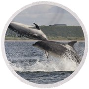 Leaping Bottlenose Dolphins - Scotland  #38 Round Beach Towel