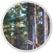Leaping Red Squirrel Tall Round Beach Towel