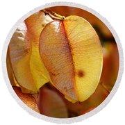 Leaves Hang For Fall-gerorgia Round Beach Towel