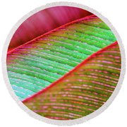 Leaves In Color  Round Beach Towel