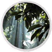 Leaves In The Sun Round Beach Towel