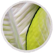 Leaves In White Round Beach Towel