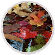 Leaves Of Color Round Beach Towel