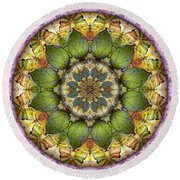 Leaves Of Glass Round Beach Towel