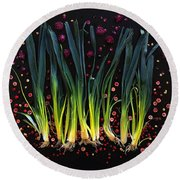 Leeks Round Beach Towel
