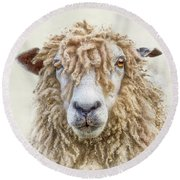 Leicester Longwool Sheep Round Beach Towel