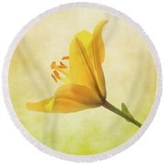 Round Beach Towel featuring the photograph Lemon Lily by Roy McPeak