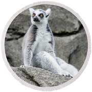 Lemur The Cutie Round Beach Towel